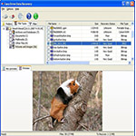 Imagen de Easy Drive Data Recovery 2.3